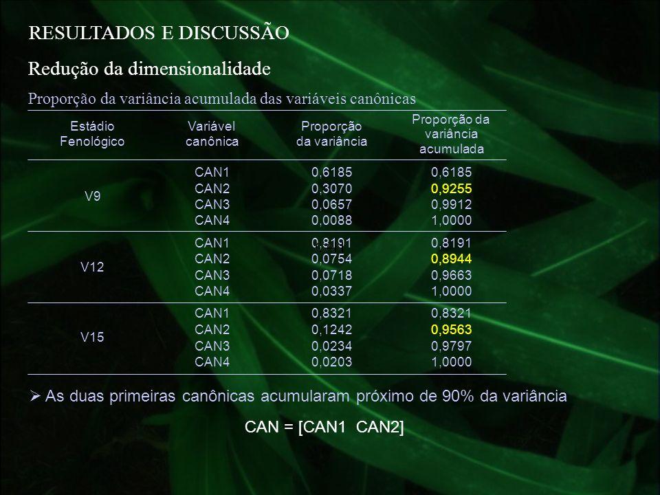 RESULTADOS E DISCUSSÃO Estádio Fenológico Variável canônica Proporção da variância Proporção da variância acumulada CAN10,6185 CAN20,30700,9255 CAN30,