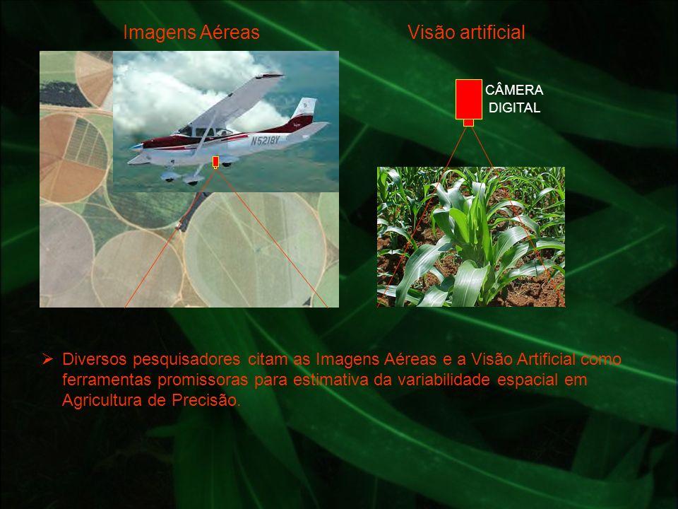 Diversos pesquisadores citam as Imagens Aéreas e a Visão Artificial como ferramentas promissoras para estimativa da variabilidade espacial em Agricult