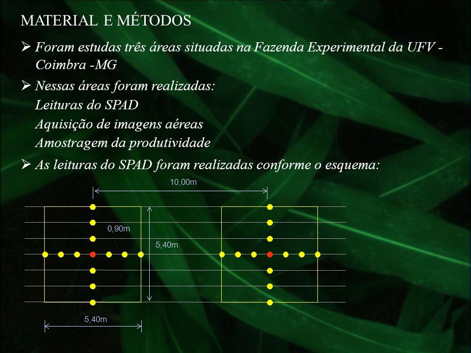 Foram estudas três áreas situadas na Fazenda Experimental da UFV - Coimbra -MG MATERIAL E MÉTODOS Nessas áreas foram realizadas: Leituras do SPAD Aqui