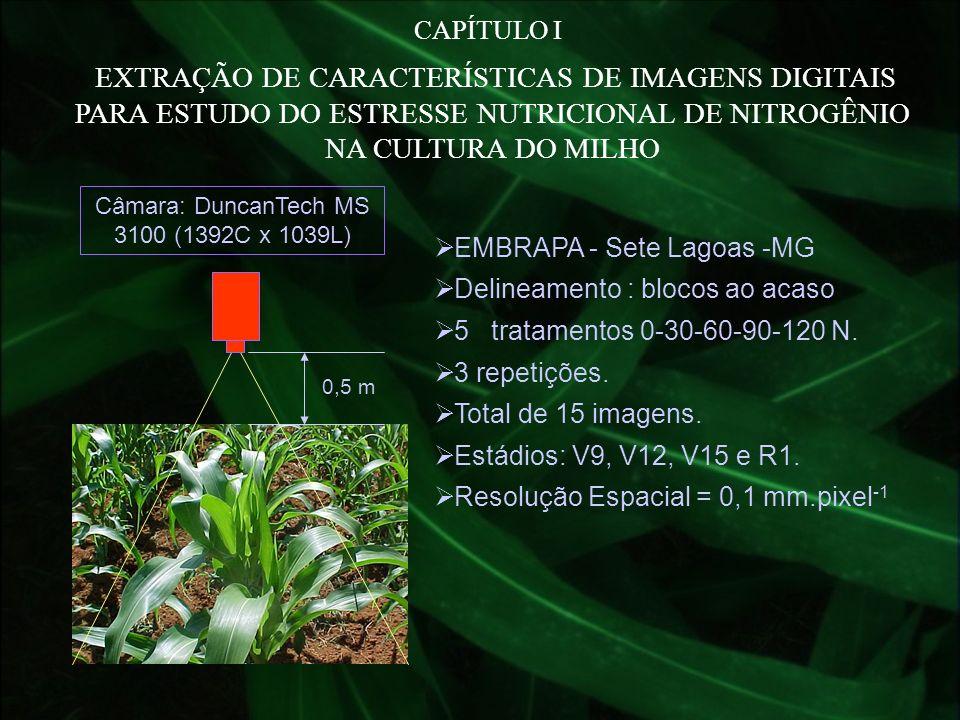EMBRAPA - Sete Lagoas -MG Delineamento : blocos ao acaso 5 tratamentos 0-30-60-90-120 N. 3 repetições. Total de 15 imagens. Estádios: V9, V12, V15 e R