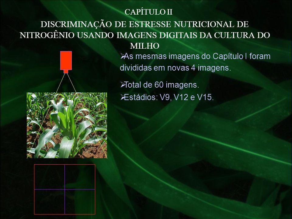 CAPÍTULO II DISCRIMINAÇÃO DE ESTRESSE NUTRICIONAL DE NITROGÊNIO USANDO IMAGENS DIGITAIS DA CULTURA DO MILHO As mesmas imagens do Capítulo I foram divi