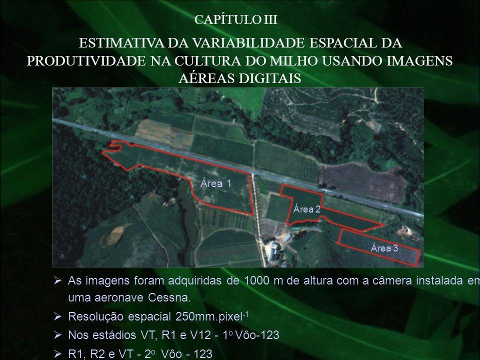 CAPÍTULO III ESTIMATIVA DA VARIABILIDADE ESPACIAL DA PRODUTIVIDADE NA CULTURA DO MILHO USANDO IMAGENS AÉREAS DIGITAIS As imagens foram adquiridas de 1