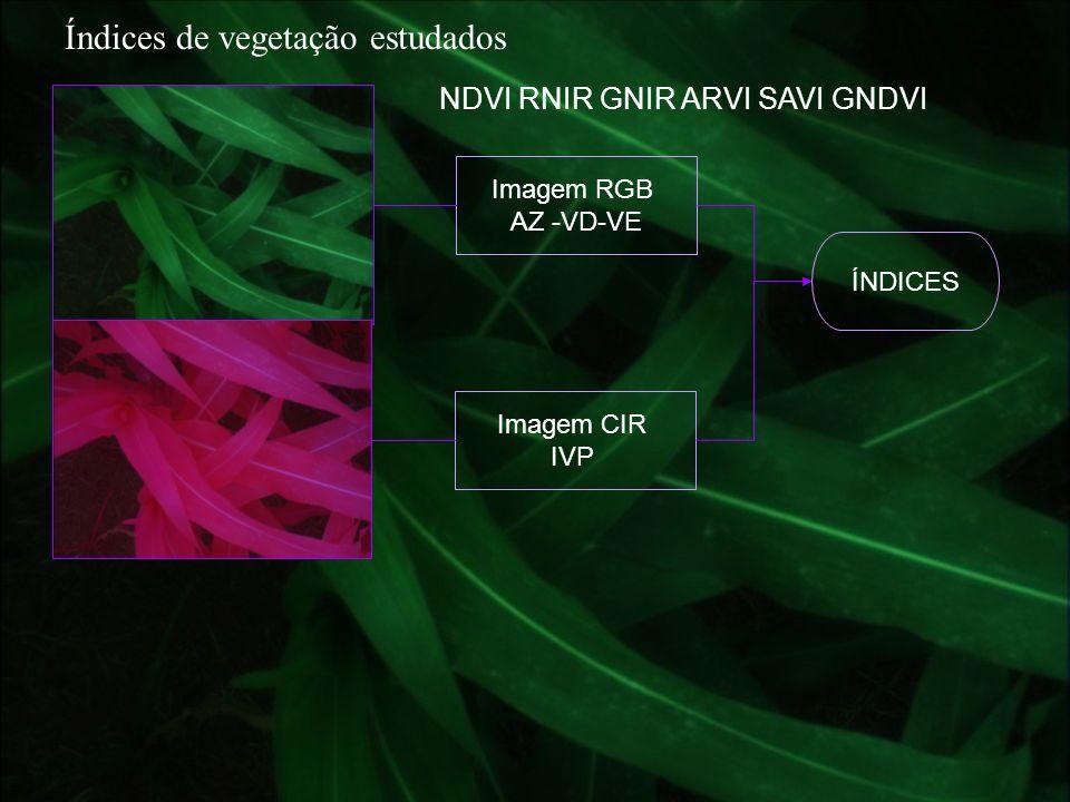 Índices de vegetação estudados NDVI RNIR GNIR ARVI SAVI GNDVI Imagem RGB AZ -VD-VE Imagem CIR IVP ÍNDICES