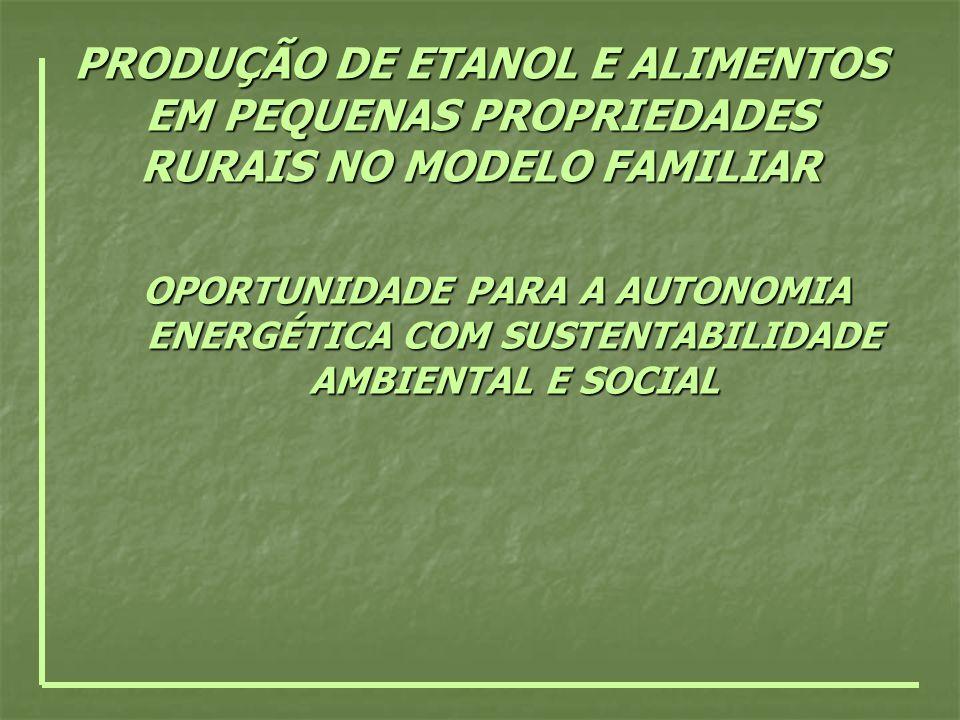 PRODUÇÃO DE ETANOL E ALIMENTOS EM PEQUENAS PROPRIEDADES RURAIS NO MODELO FAMILIAR OPORTUNIDADE PARA A AUTONOMIA ENERGÉTICA COM SUSTENTABILIDADE AMBIEN
