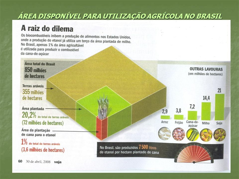 ÁREA DISPONÍVEL PARA UTILIZAÇÃO AGRÍCOLA NO BRASIL