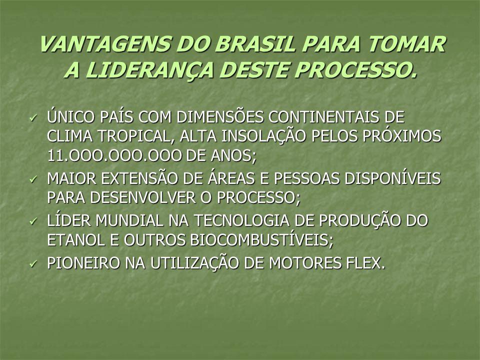 VANTAGENS DO BRASIL PARA TOMAR A LIDERANÇA DESTE PROCESSO. ÚNICO PAÍS COM DIMENSÕES CONTINENTAIS DE CLIMA TROPICAL, ALTA INSOLAÇÃO PELOS PRÓXIMOS 11.O