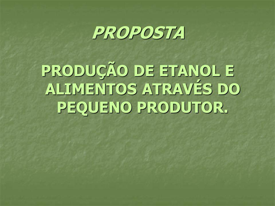 PROPOSTA PRODUÇÃO DE ETANOL E ALIMENTOS ATRAVÉS DO PEQUENO PRODUTOR.
