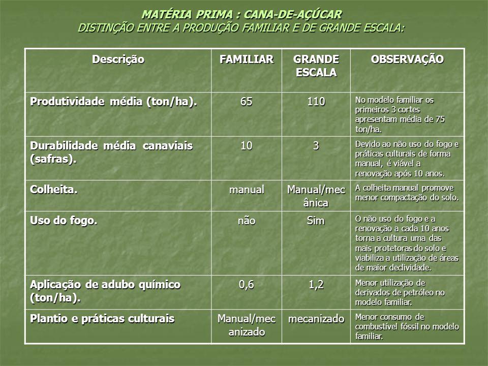 MATÉRIA PRIMA : CANA-DE-AÇÚCAR DISTINÇÃO ENTRE A PRODUÇÃO FAMILIAR E DE GRANDE ESCALA: DescriçãoFAMILIAR GRANDE ESCALA OBSERVAÇÃO Produtividade média