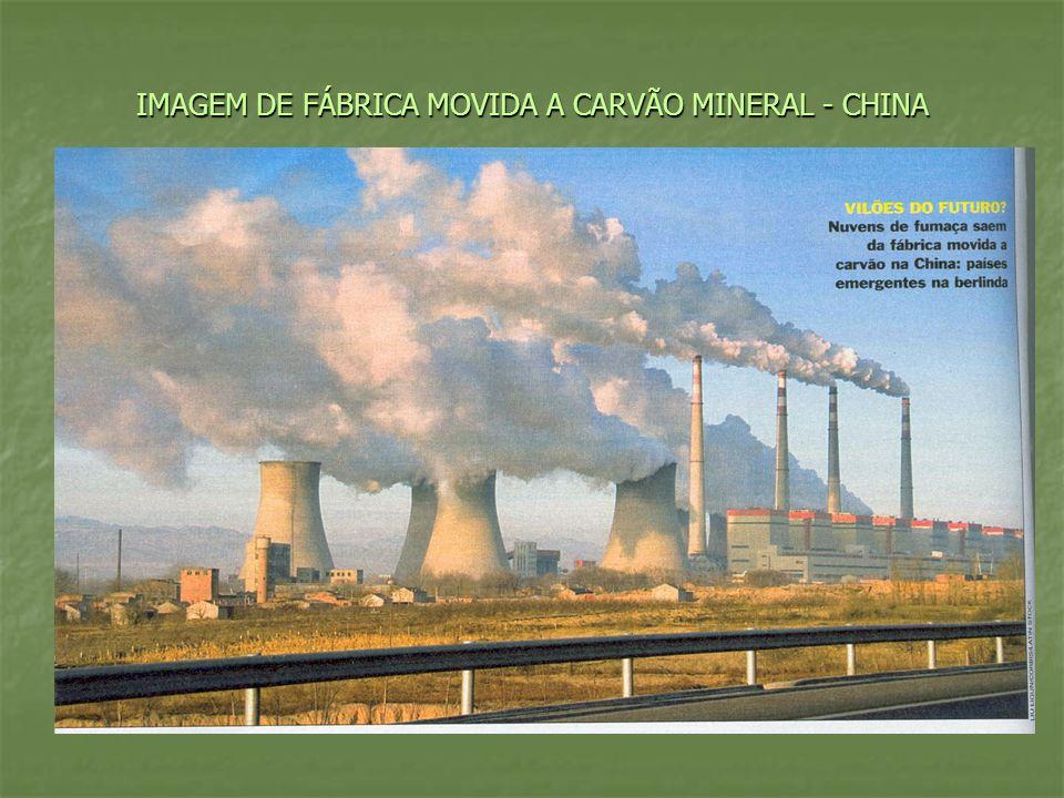 PROGNÓSTICO Elevação dos preços dos alimentos e do petróleo; Elevação dos preços dos alimentos e do petróleo; Aquecimento global acelerado; Aquecimento global acelerado; Conflitos por terra e energia.