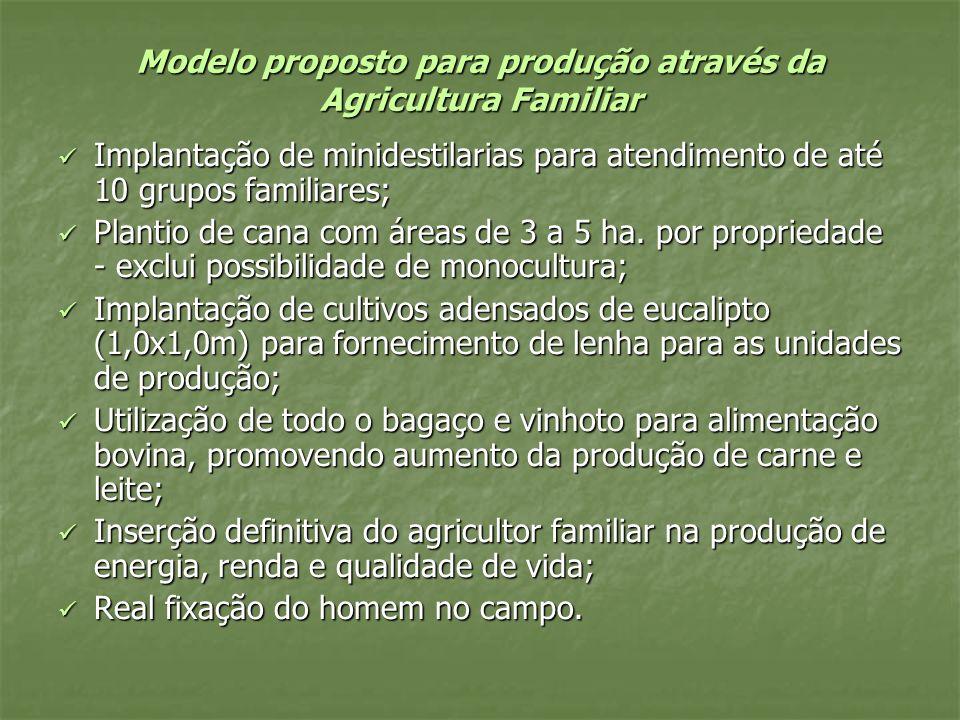 Modelo proposto para produção através da Agricultura Familiar Implantação de minidestilarias para atendimento de até 10 grupos familiares; Implantação