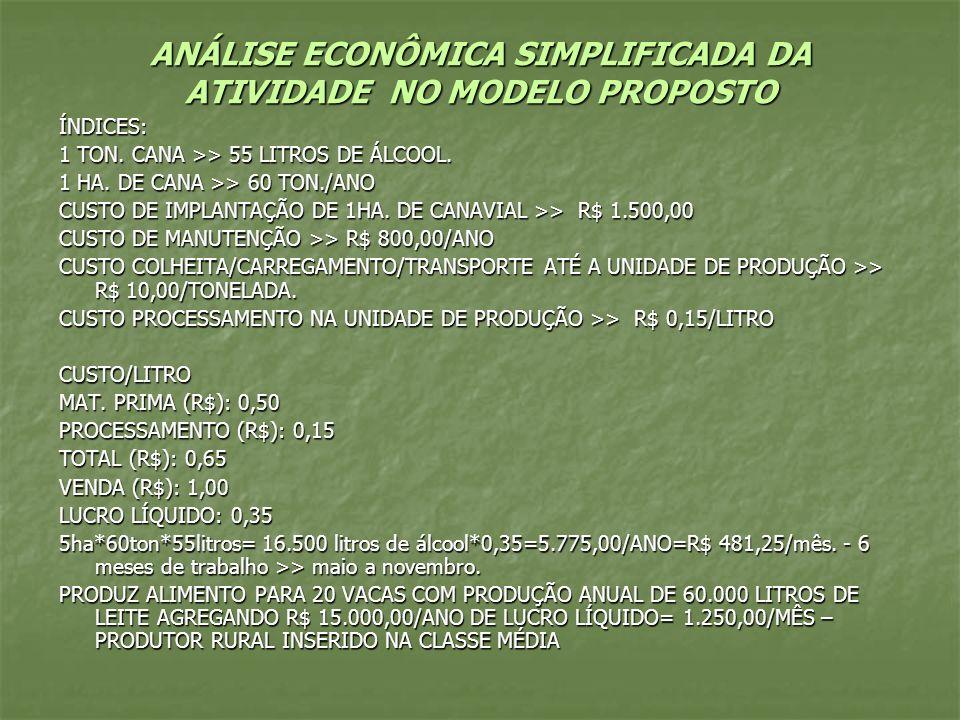 ANÁLISE ECONÔMICA SIMPLIFICADA DA ATIVIDADE NO MODELO PROPOSTO ÍNDICES: 1 TON. CANA >> 55 LITROS DE ÁLCOOL. 1 HA. DE CANA >> 60 TON./ANO CUSTO DE IMPL