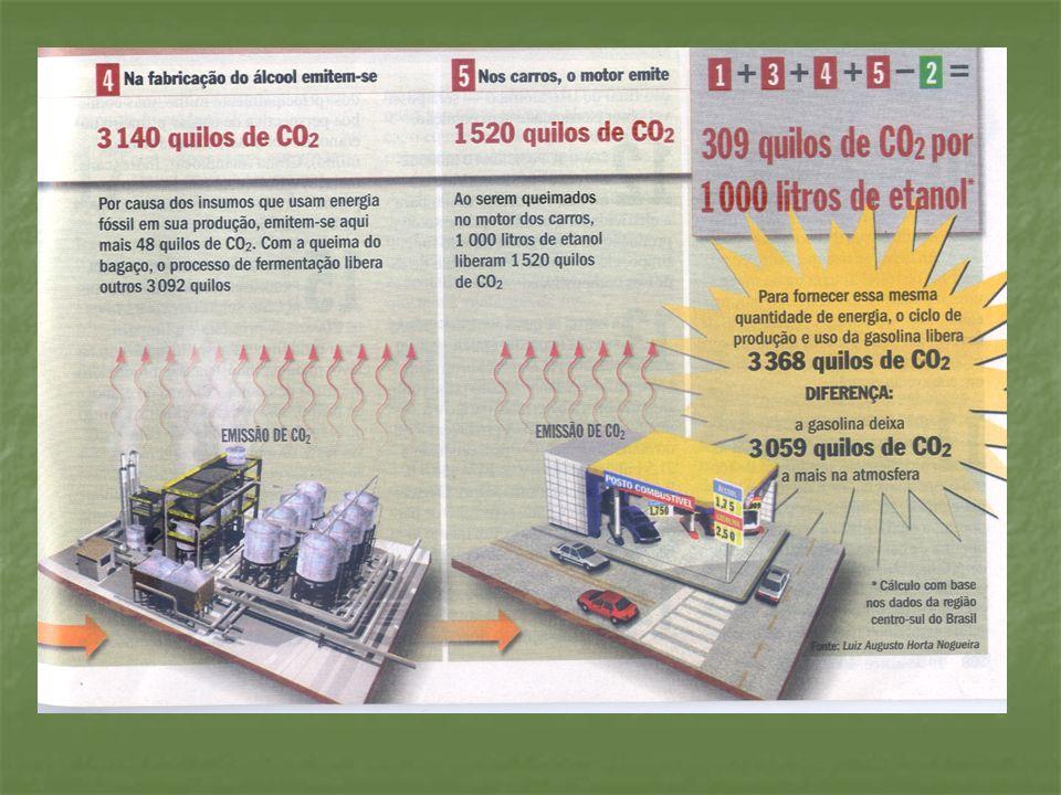 VANTAGENS AMBIENTAIS DA PRODUÇÃO DE ETANOL ATRAVÉS DA AGRICULTURA FAMILIAR Emissão de gases provocadores do efeito estufa 90% menor em relação aos combustíveis fósseis; Emissão de gases provocadores do efeito estufa 90% menor em relação aos combustíveis fósseis; No modelo familiar sem o uso do fogo, cultura protege o solo, diminui a erosão; No modelo familiar sem o uso do fogo, cultura protege o solo, diminui a erosão; A rusticidade da cana, associada a capacidade de proteção do solo, viabilizam a utilização de áreas menos nobres da propriedade não competindo com as culturas anuais.