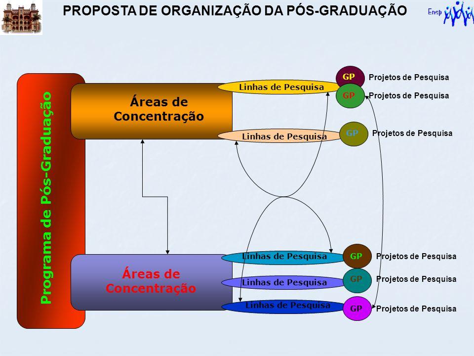 Linhas de Pesquisa Programa de Pós-Graduação Áreas de Concentração Linhas de Pesquisa GP PROPOSTA DE ORGANIZAÇÃO DA PÓS-GRADUAÇÃO Projetos de Pesquisa