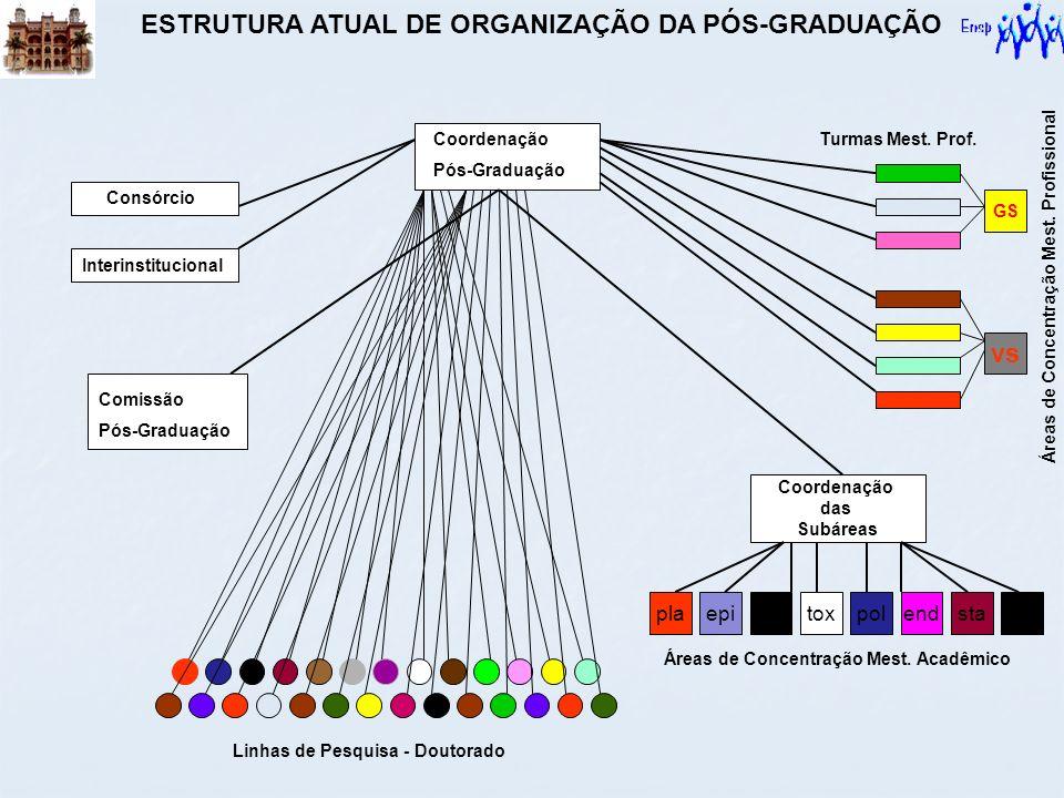 Linhas de Pesquisa - Doutorado Coordenação das Subáreas ssendstaplaepisanpoltox vs GS Áreas de Concentração Mest. Acadêmico Áreas de Concentração Mest