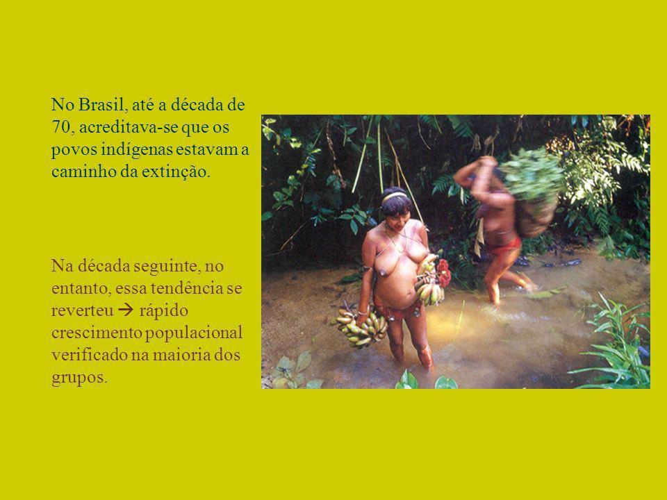 No Brasil, até a década de 70, acreditava-se que os povos indígenas estavam a caminho da extinção. Na década seguinte, no entanto, essa tendência se r