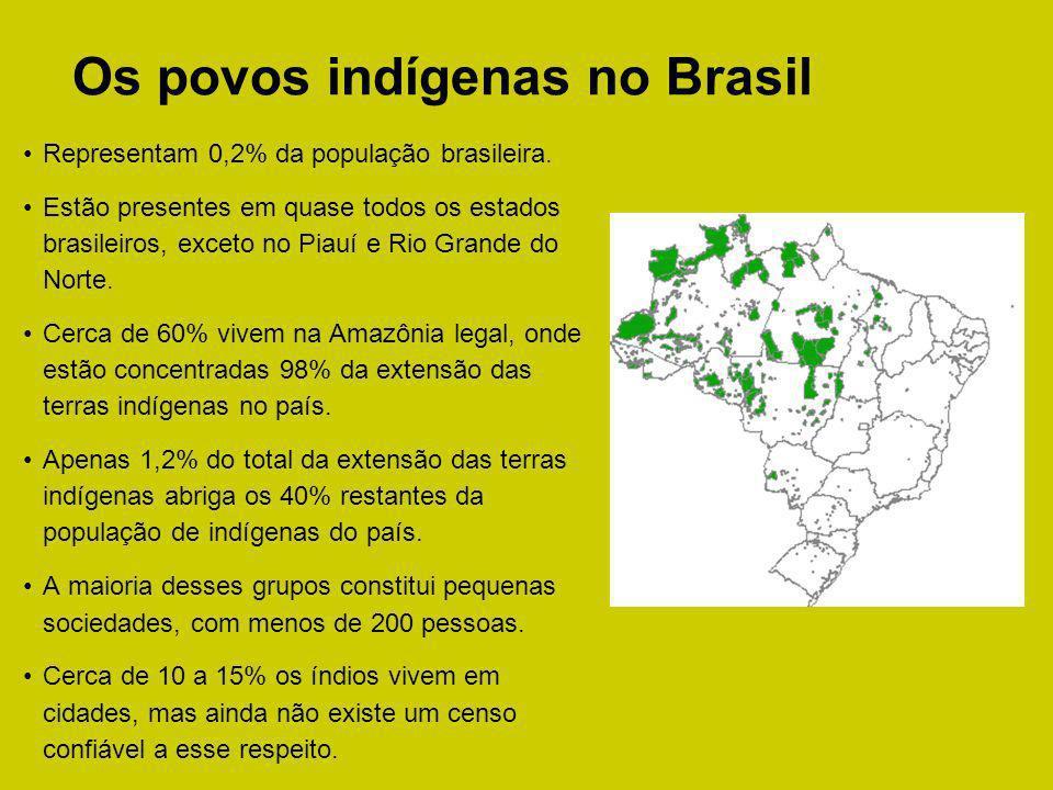 Os povos indígenas no Brasil Representam 0,2% da população brasileira. Estão presentes em quase todos os estados brasileiros, exceto no Piauí e Rio Gr