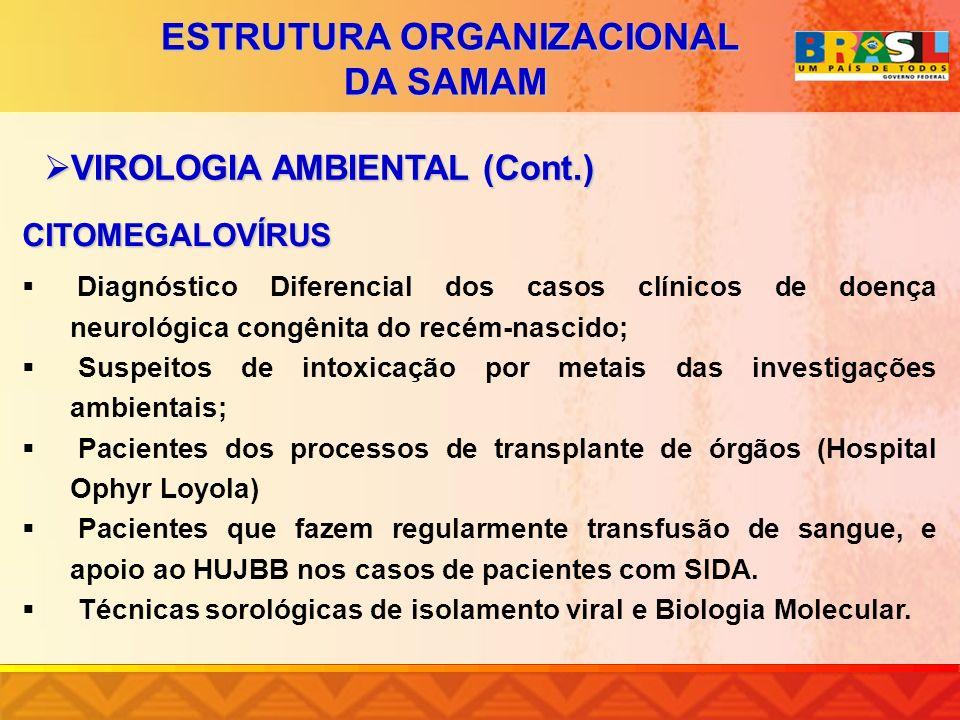 CITOMEGALOVÍRUS Diagnóstico Diferencial dos casos clínicos de doença neurológica congênita do recém-nascido; Suspeitos de intoxicação por metais das i