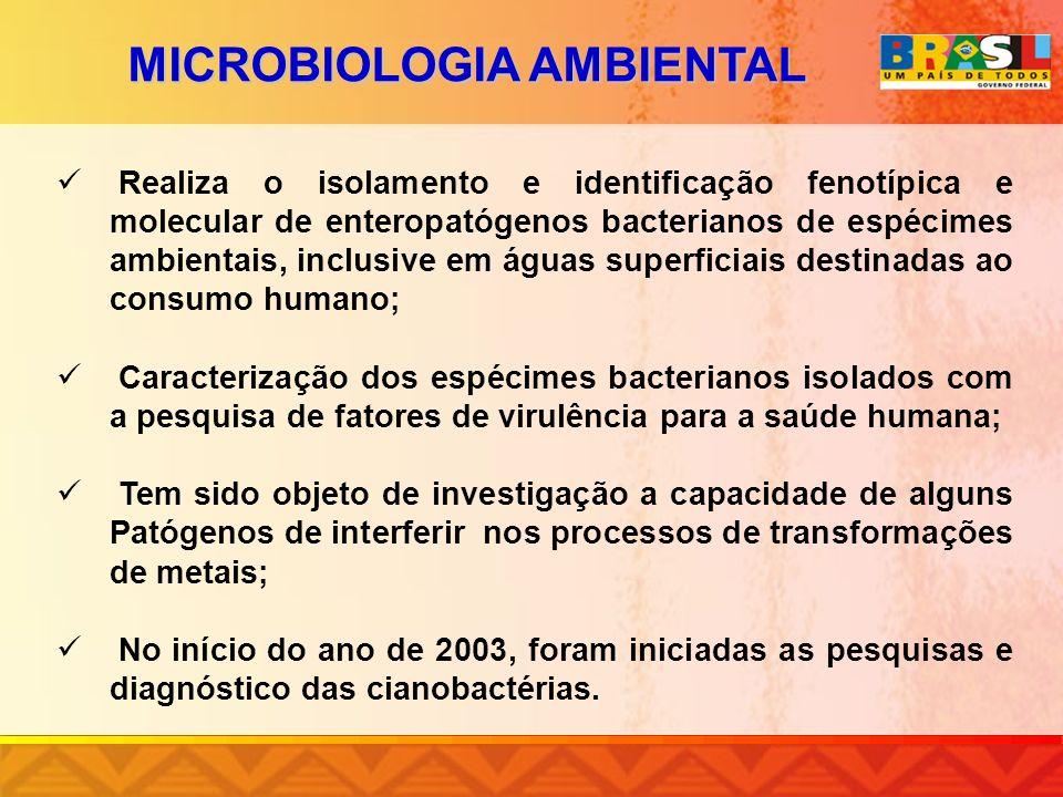 MICROBIOLOGIA AMBIENTAL Realiza o isolamento e identificação fenotípica e molecular de enteropatógenos bacterianos de espécimes ambientais, inclusive