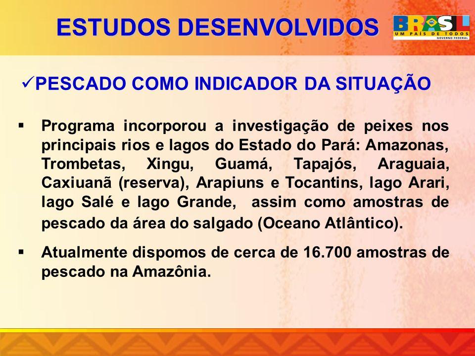 PESCADO COMO INDICADOR DA SITUAÇÃO Programa incorporou a investigação de peixes nos principais rios e lagos do Estado do Pará: Amazonas, Trombetas, Xi
