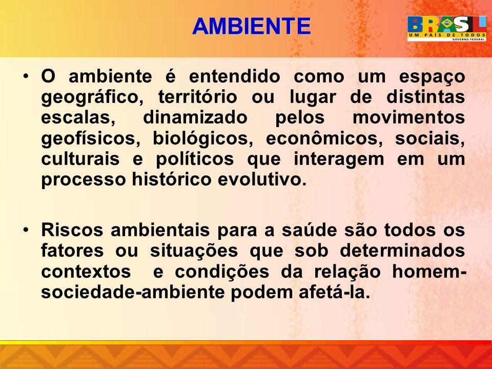 NÍVEIS DE MERCÚRIO EM MÃES POR FAIXA ETÁRIA E EM RECÉM-NASCIDOS ATENDIDOS EM TRÊS MATERNIDADES DA CIDADE DE ITAITUBA, PARÁ, BRASIL, 2002.