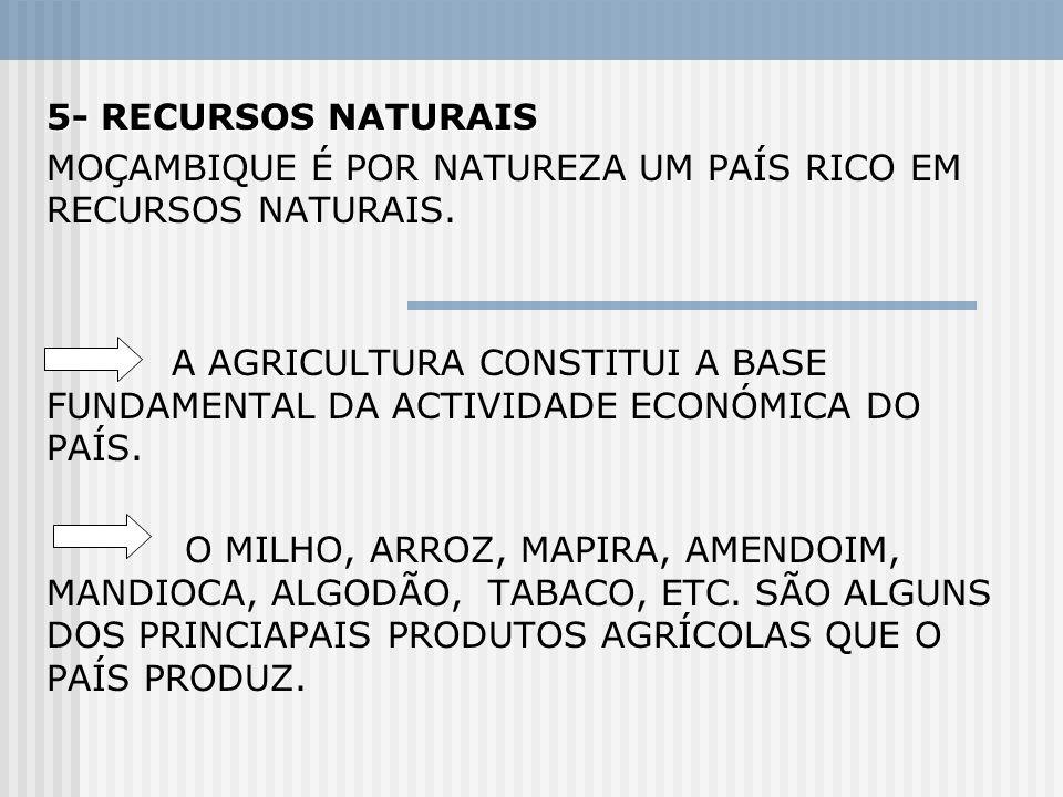 5- RECURSOS NATURAIS MOÇAMBIQUE É POR NATUREZA UM PAÍS RICO EM RECURSOS NATURAIS. A AGRICULTURA CONSTITUI A BASE FUNDAMENTAL DA ACTIVIDADE ECONÓMICA D