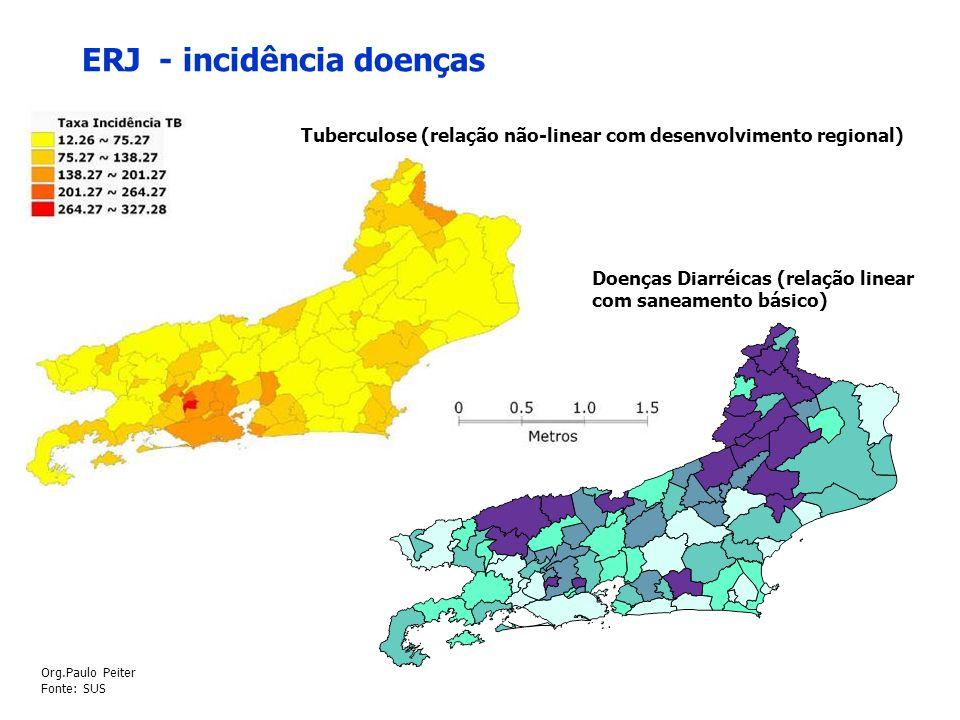 ERJ - incidência doenças Doenças Diarréicas (relação linear com saneamento básico) Tuberculose (relação não-linear com desenvolvimento regional) Org.P