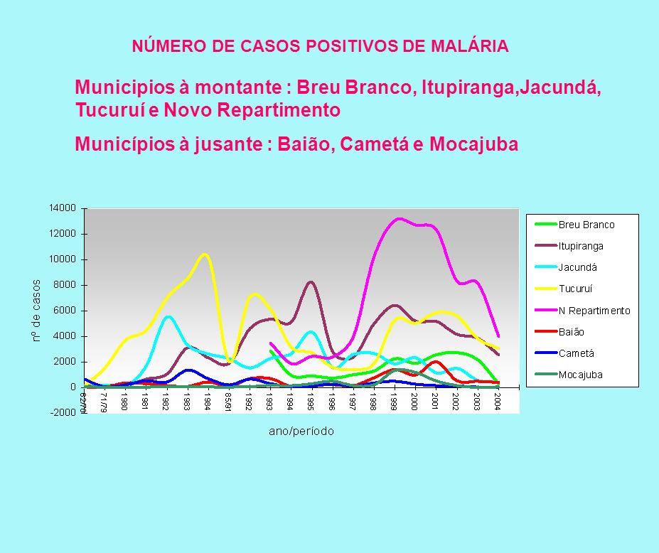 NÚMERO DE CASOS POSITIVOS DE MALÁRIA Municipios à montante : Breu Branco, Itupiranga,Jacundá, Tucuruí e Novo Repartimento Municípios à jusante : Baião