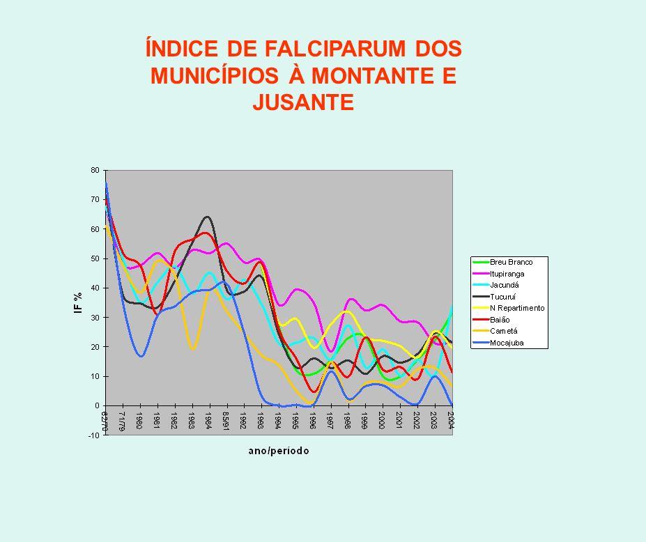 ÍNDICE DE FALCIPARUM DOS MUNICÍPIOS À MONTANTE E JUSANTE