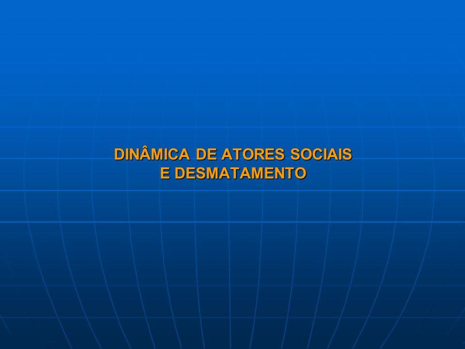 DINÂMICA DE ATORES SOCIAIS E DESMATAMENTO