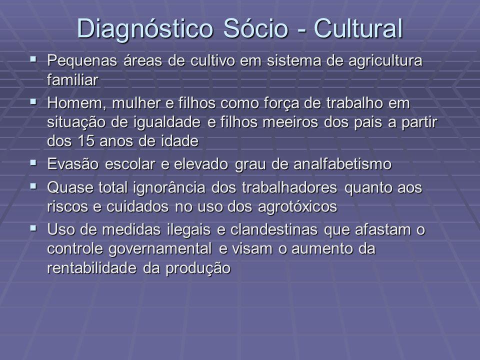 Diagnóstico Sócio - Cultural Pequenas áreas de cultivo em sistema de agricultura familiar Pequenas áreas de cultivo em sistema de agricultura familiar