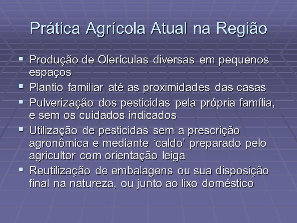 Prática Agrícola Atual na Região Produção de Olerículas diversas em pequenos espaços Produção de Olerículas diversas em pequenos espaços Plantio famil