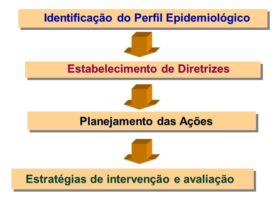 Estratégias de intervenção e avaliação Planejamento das Ações Identificação do Perfil Epidemiológico Estabelecimento de Diretrizes
