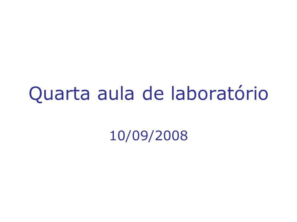 Quarta aula de laboratório 10/09/2008
