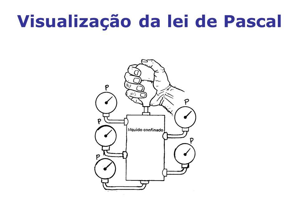Aplicação da lei de Pascal Exercício do livro do Professor Franco Brunetti