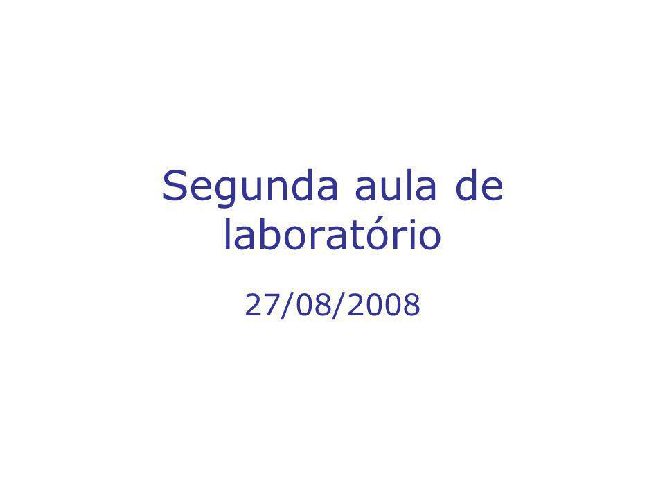 Segunda aula de laboratório 27/08/2008