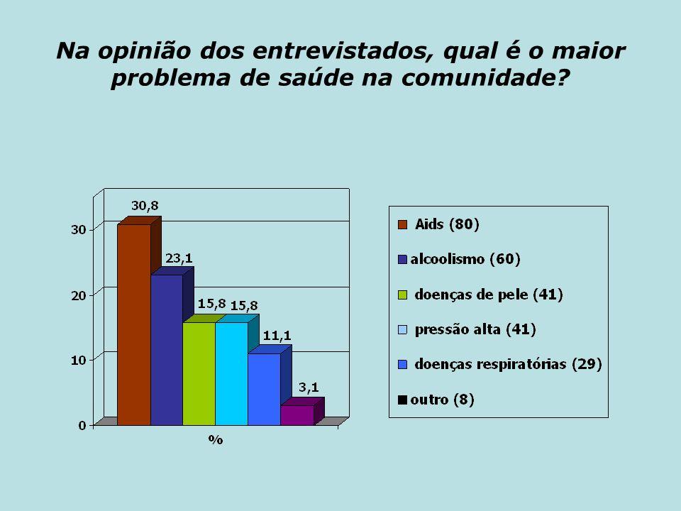 Na opinião dos entrevistados, qual é o maior problema de saúde na comunidade?