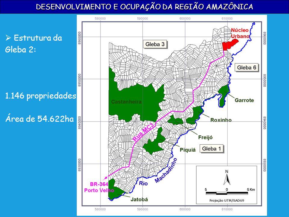 DESENVOLVIMENTO E OCUPAÇÃO DA REGIÃO AMAZÔNICA Estrutura da Gleba 2: 1.146 propriedades Área de 54.622ha