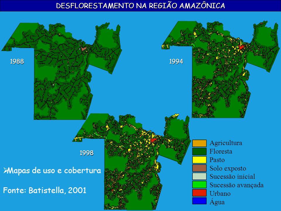 DESFLORESTAMENTO NA REGIÃO AMAZÔNICA Fonte: Batistella, 2001 19881994 1998 Mapas de uso e cobertura Agricultura Floresta Pasto Solo exposto Sucessão i