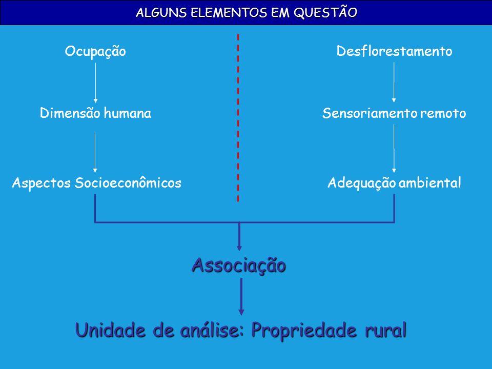 ALGUNS ELEMENTOS EM QUESTÃO Associação Ocupação Dimensão humana Aspectos Socioeconômicos Desflorestamento Sensoriamento remoto Adequação ambiental Uni
