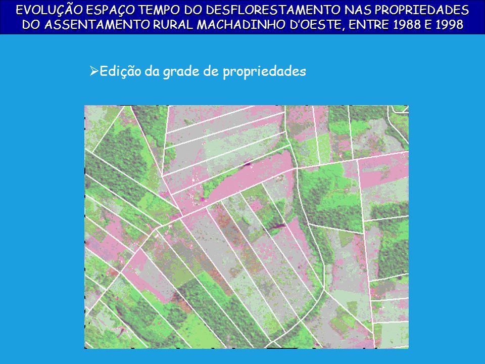 EVOLUÇÃO ESPAÇO TEMPO DO DESFLORESTAMENTO NAS PROPRIEDADES DO ASSENTAMENTO RURAL MACHADINHO DOESTE, ENTRE 1988 E 1998 Edição da grade de propriedades