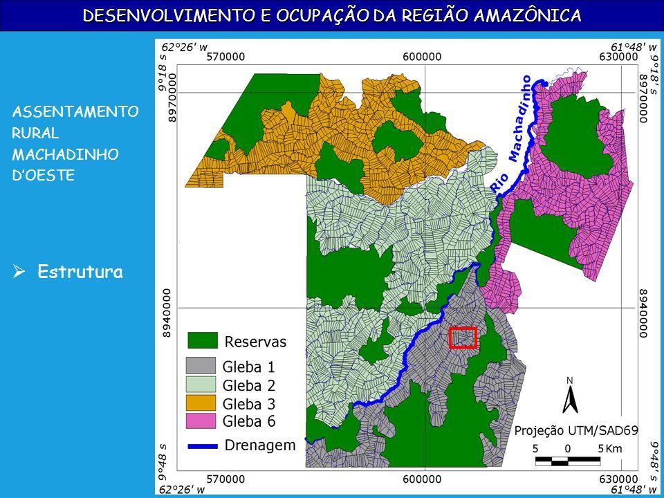 DESENVOLVIMENTO E OCUPAÇÃO DA REGIÃO AMAZÔNICA ASSENTAMENTO RURAL MACHADINHO DOESTE Estrutura