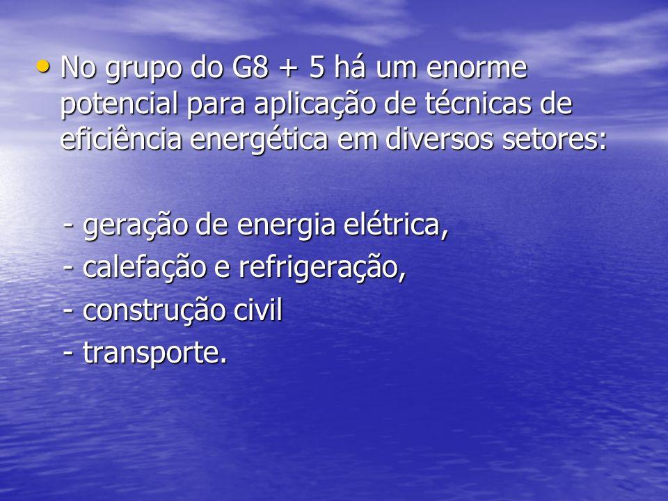 No grupo do G8 + 5 há um enorme potencial para aplicação de técnicas de eficiência energética em diversos setores: No grupo do G8 + 5 há um enorme pot