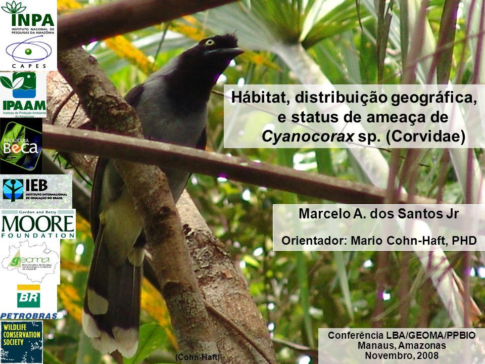 1 (Cohn-Haft) Marcelo A. dos Santos Jr Orientador: Mario Cohn-Haft, PHD Conferência LBA/GEOMA/PPBIO Manaus, Amazonas Novembro, 2008 Hábitat, distribui
