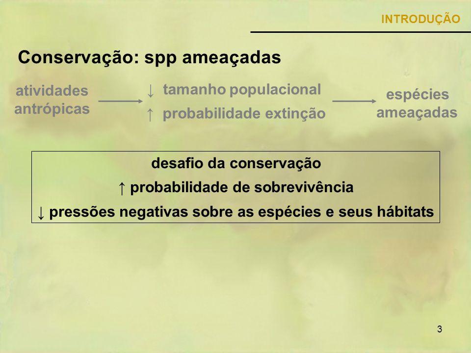 3 Conservação: spp ameaçadas INTRODUÇÃO espécies ameaçadas tamanho populacional probabilidade extinção atividades antrópicas desafio da conservação pr