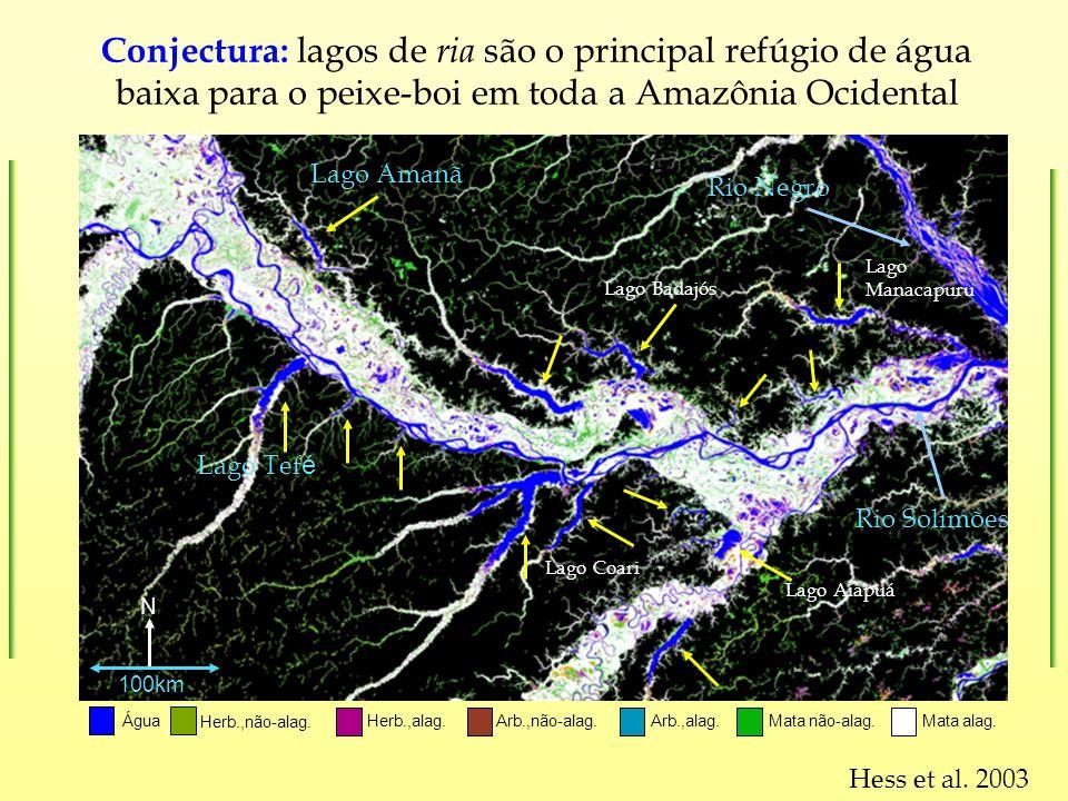 Lago Amanã Lago Tef é Água Herb.,não-alag. Arb.,não-alag.Herb.,alag.Mata alag. Mata não-alag. Arb.,alag. N Rio Negro Rio Solimões 100km Hess et al. 20