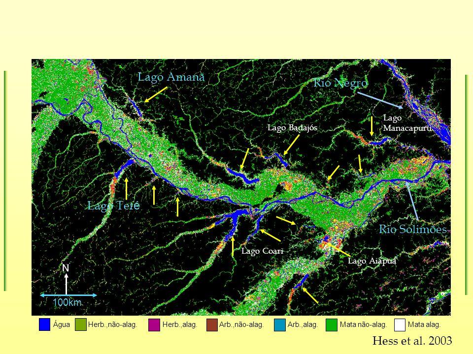 Hess et al. 2003 Água Herb.,não-alag. Arb.,não-alag.Herb.,alag.Mata alag. Mata não-alag. Arb.,alag. Lago Amanã Lago Tef é N Rio Negro Rio Solimões 100