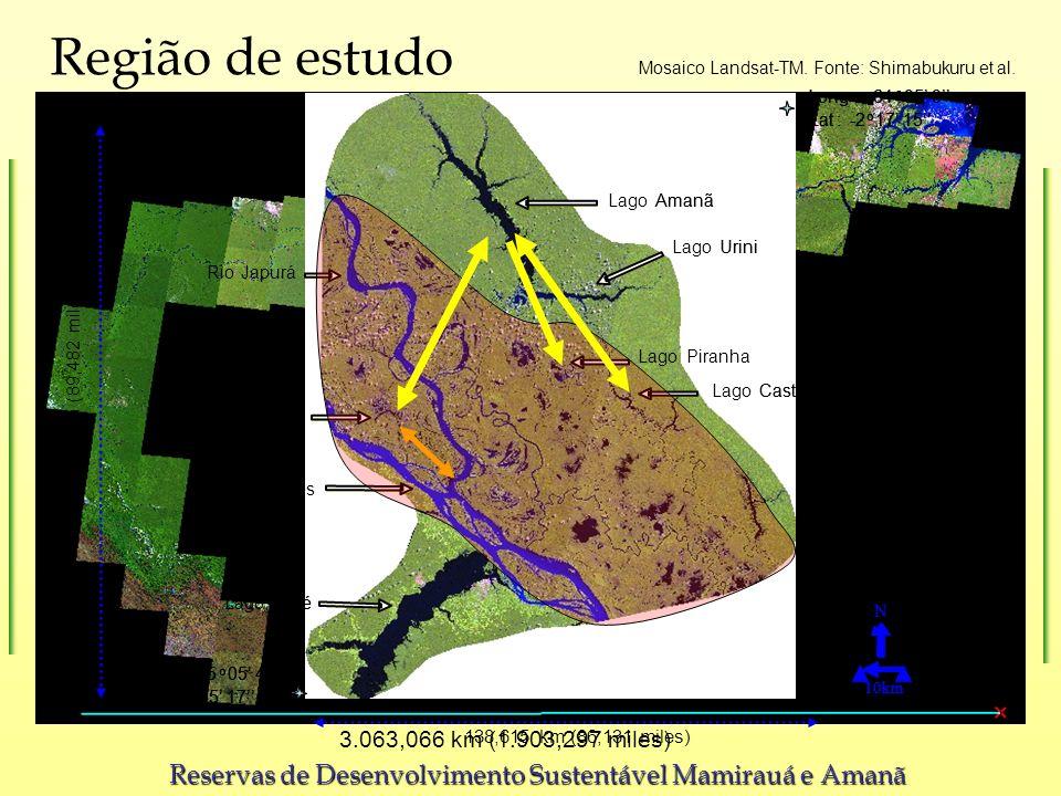 3.063,066 km (1.903,297 miles) Mosaico Landsat-TM. Fonte: Shimabukuru et al. LakeAmanã Rio LagoMamirau LakeUrini LagoTef é LakeCastanho 10km N Long:-6