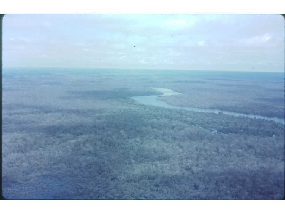 islands aereal view