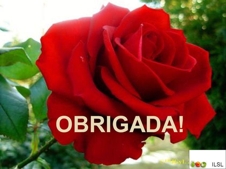 OBRIGADA! III SIMPÓSIO DE ENFERMAGEM: VERDADES E DESAFIOS AGOSTO,2009 OBRIGADA! ILSL