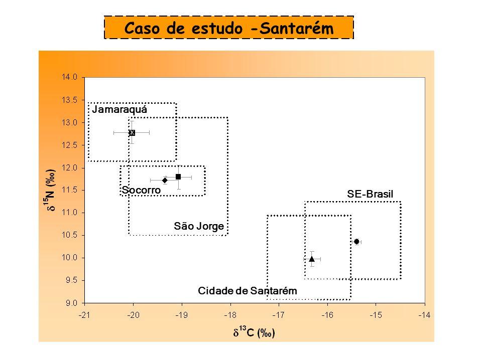 SE-Brasil Cidade de Santarém São Jorge Socorro Jamaraquá Caso de estudo -Santarém
